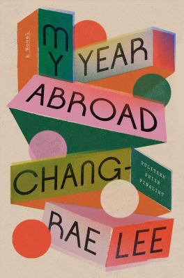 My year abroad : a novel Book cover