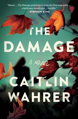The damage Book cover